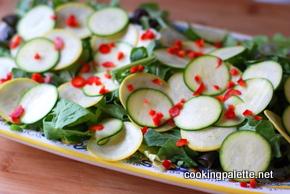 zucchini carpaccio  (7)