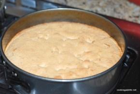 huguenot torte  (13)