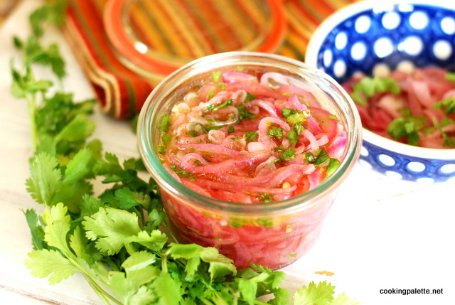 pickled red onion (17)