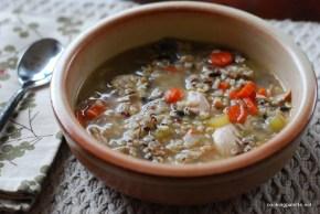 grainy turkey chicken soup (9)