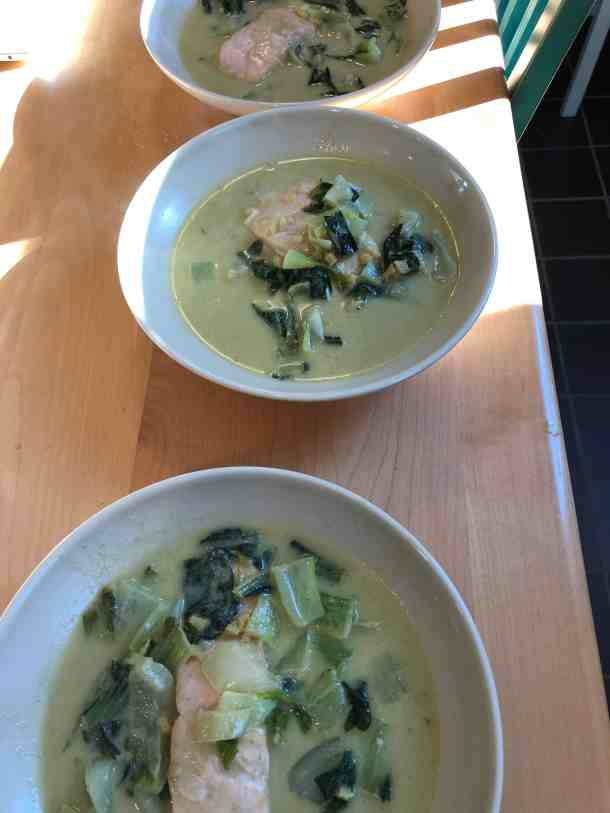 Salmon and Bok Choy Green Coconut Curry plated in bowls.