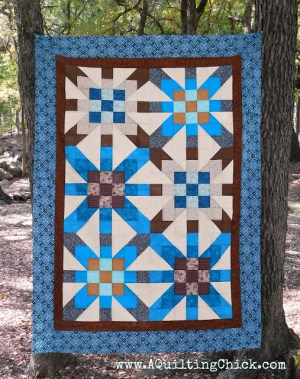 Photo by Cathy of A Quilting Chick