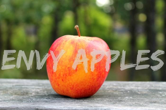Grilled Apple Turkey Burgers Envy Apples