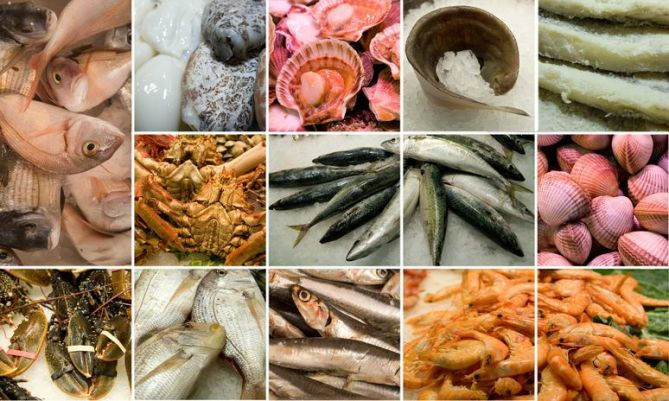 seafood types