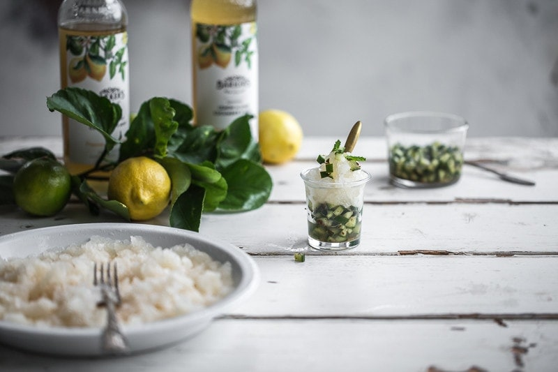Lemon Lime Granita With Cucumber Mint Salsa - Cook Republic