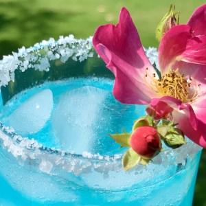 Turquoise Margarita main
