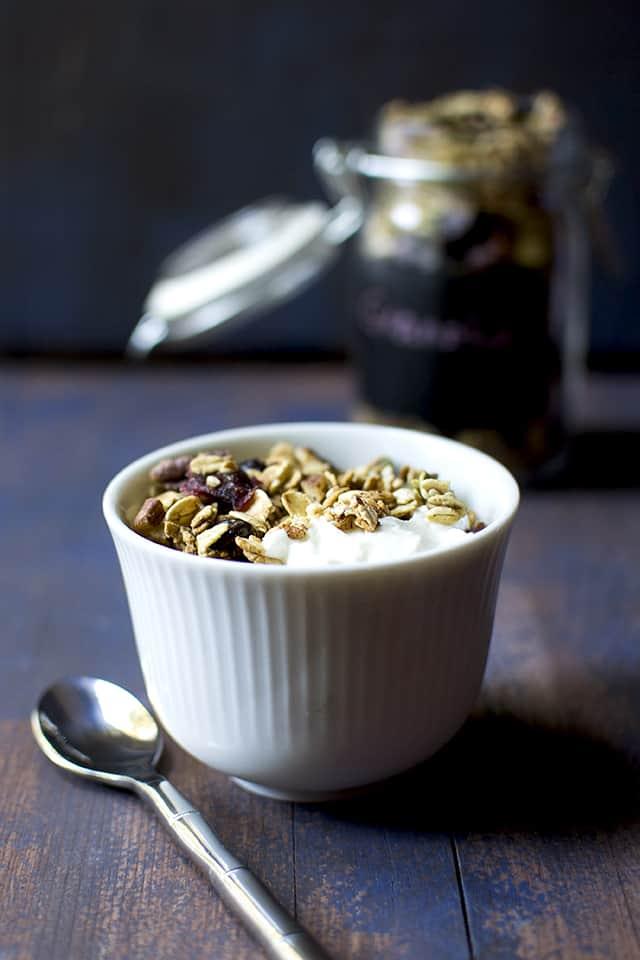 Bowl of Yogurt with cocoa nib and cranberry muesli