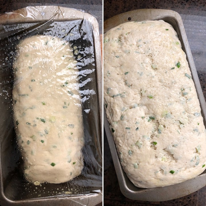 Side by side photos of dough set for second rise and a risen dough