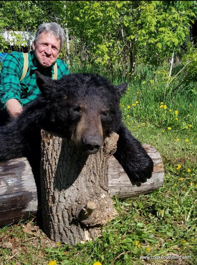 bear-hunts-canada (5)
