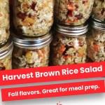 Harvest Brown Rice Salad