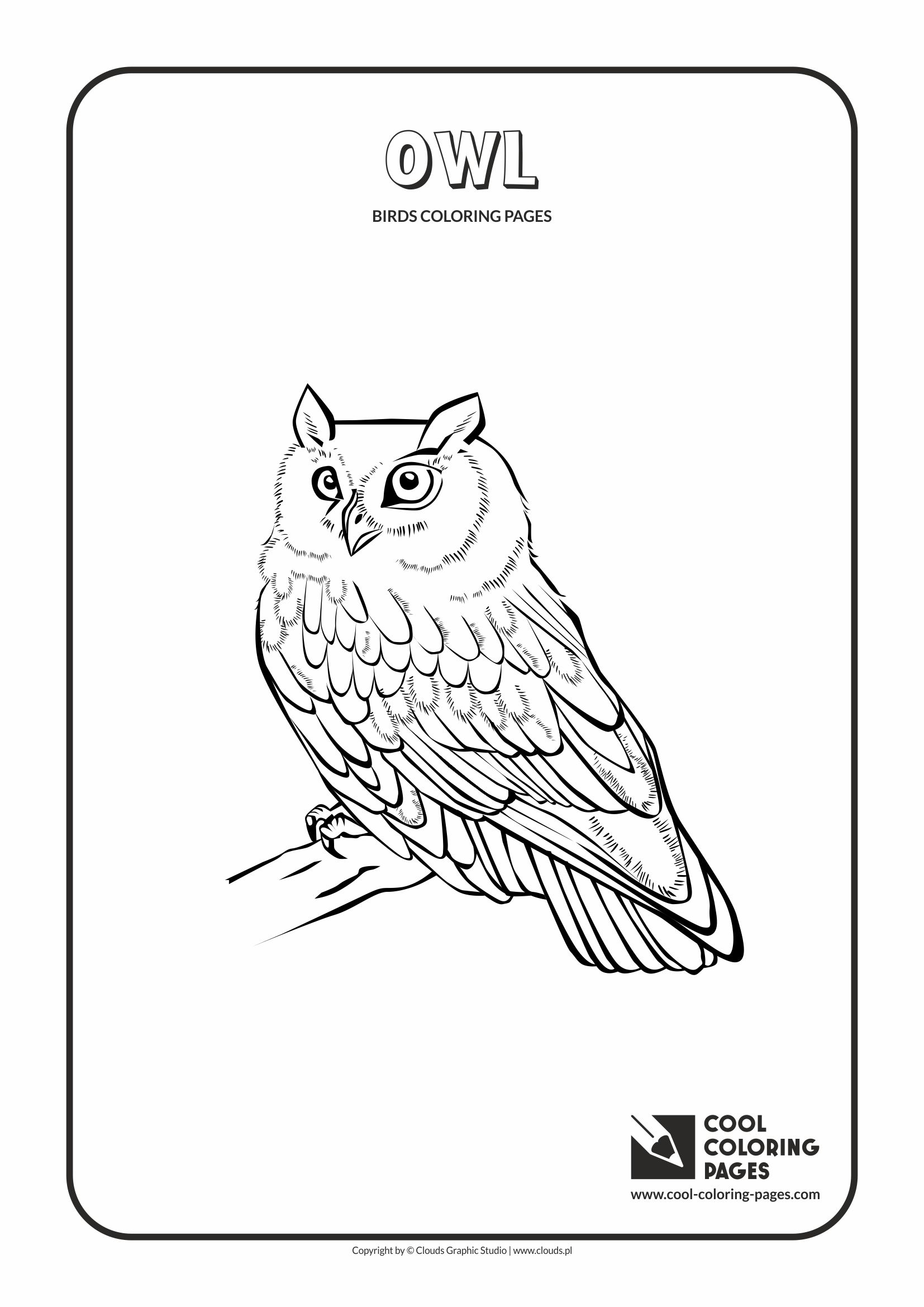 Cool Coloring Pages Owl Coloring Page