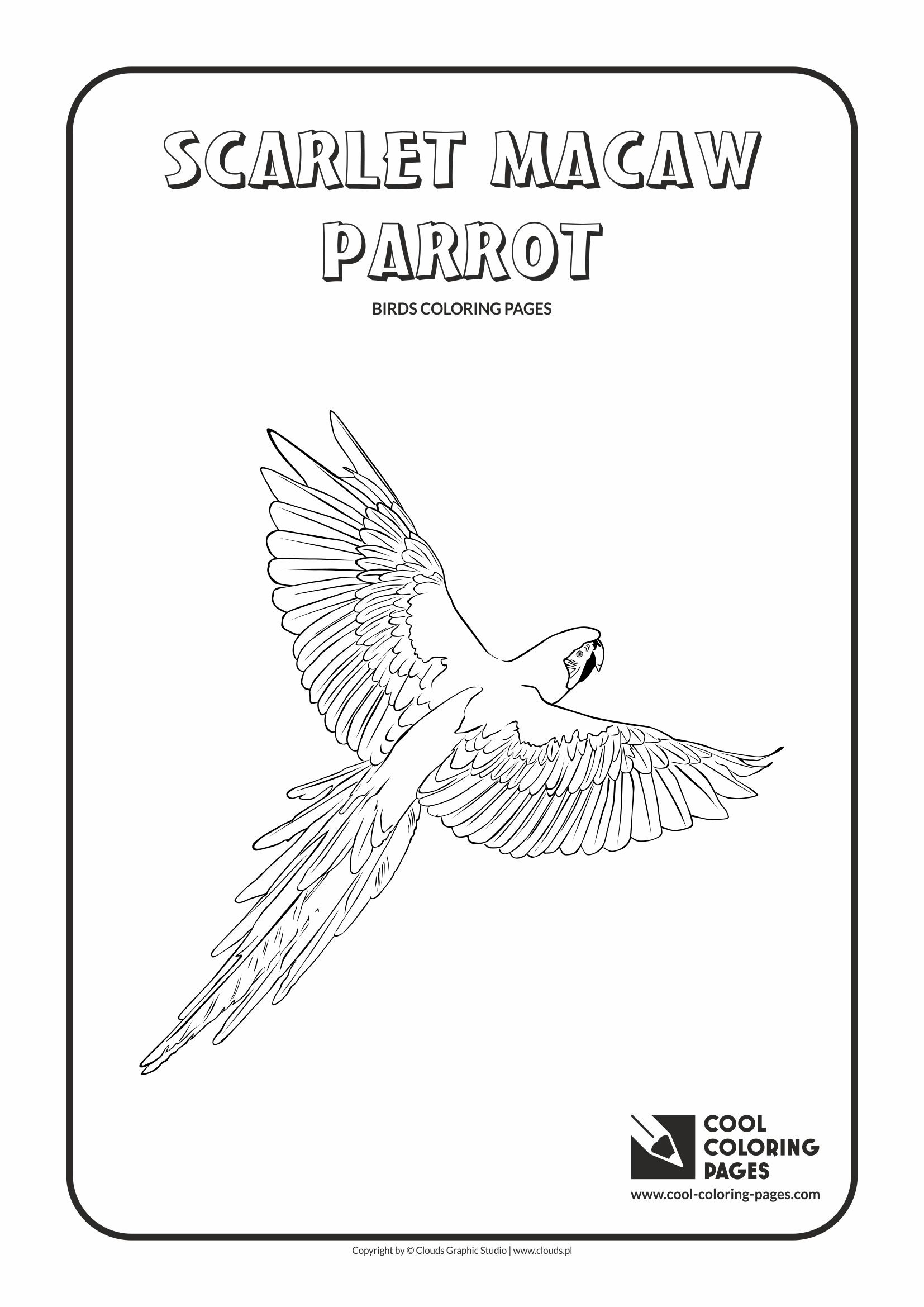 31 Scarlet Macaw Coloring Pages