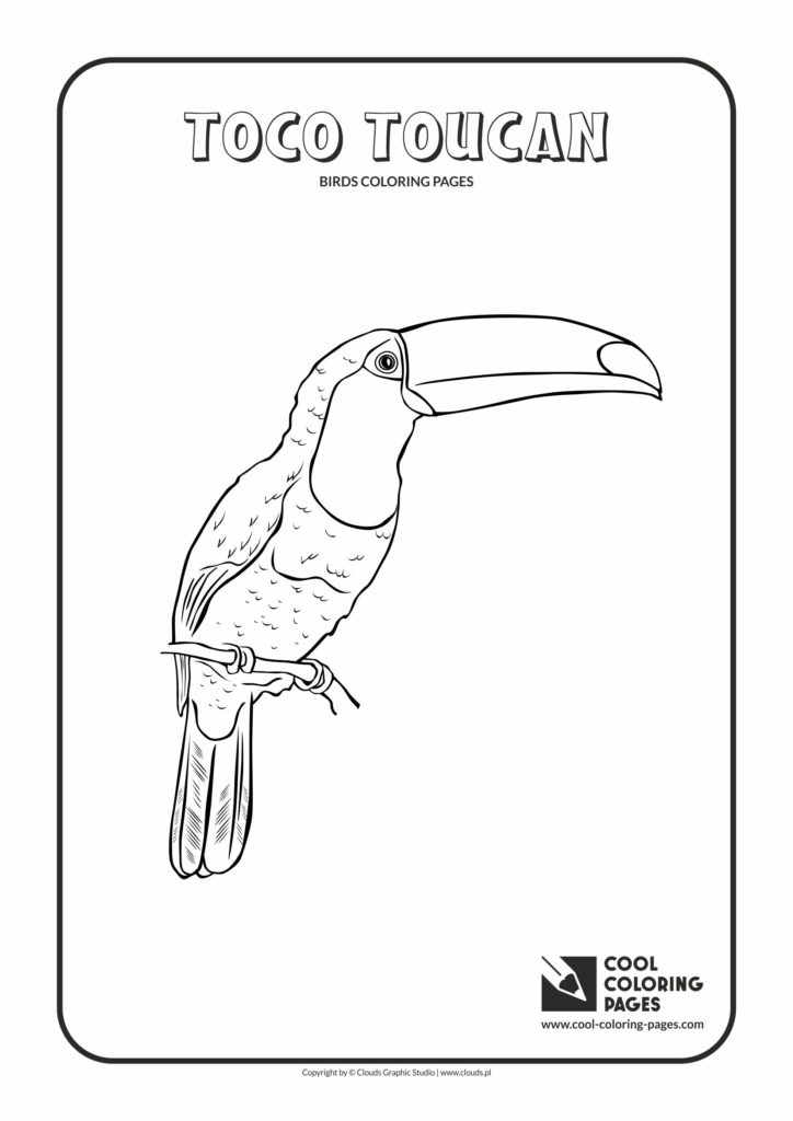 cool coloring pages toco toucan coloring page  cool