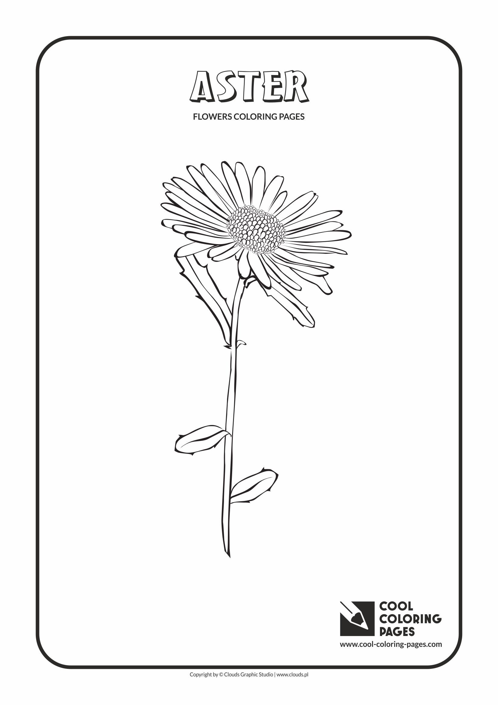 Cool Coloring Pages Flowers Coloring Pages