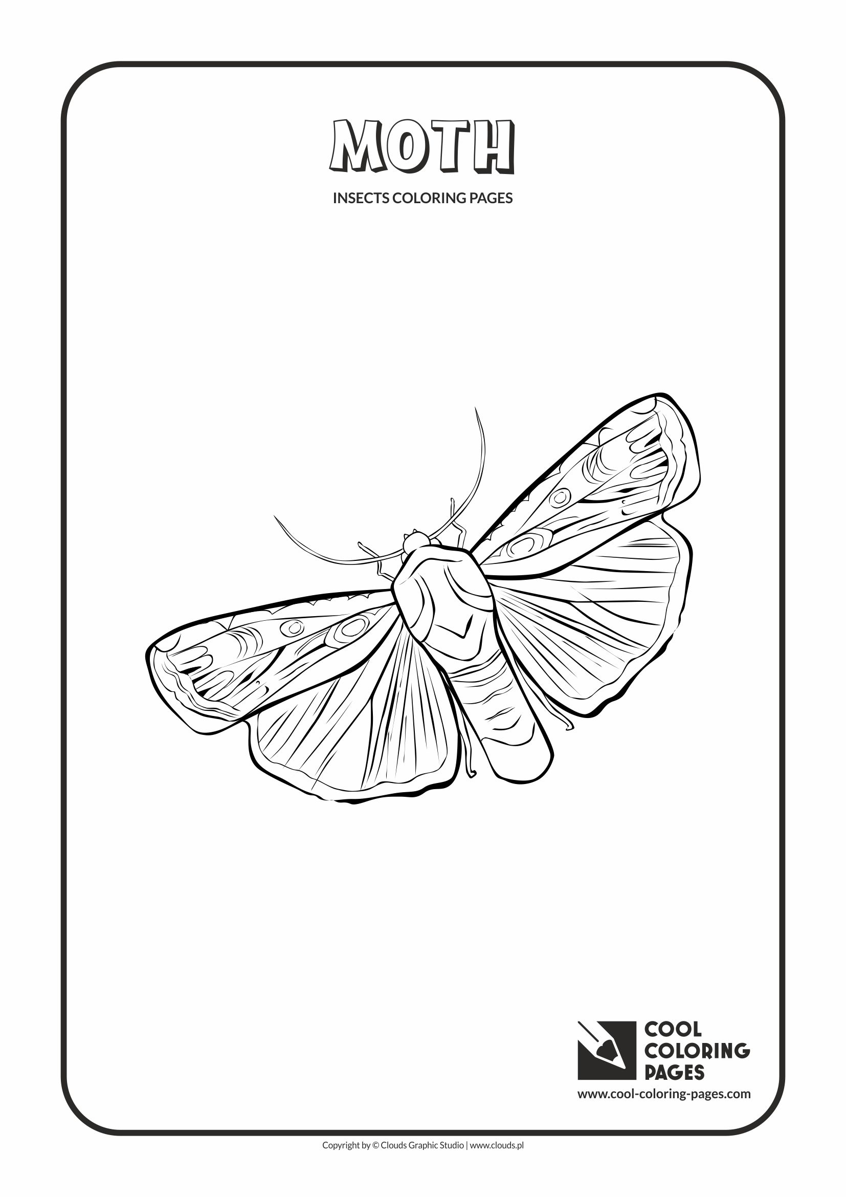 Cool Coloring Pages Moth Coloring Page