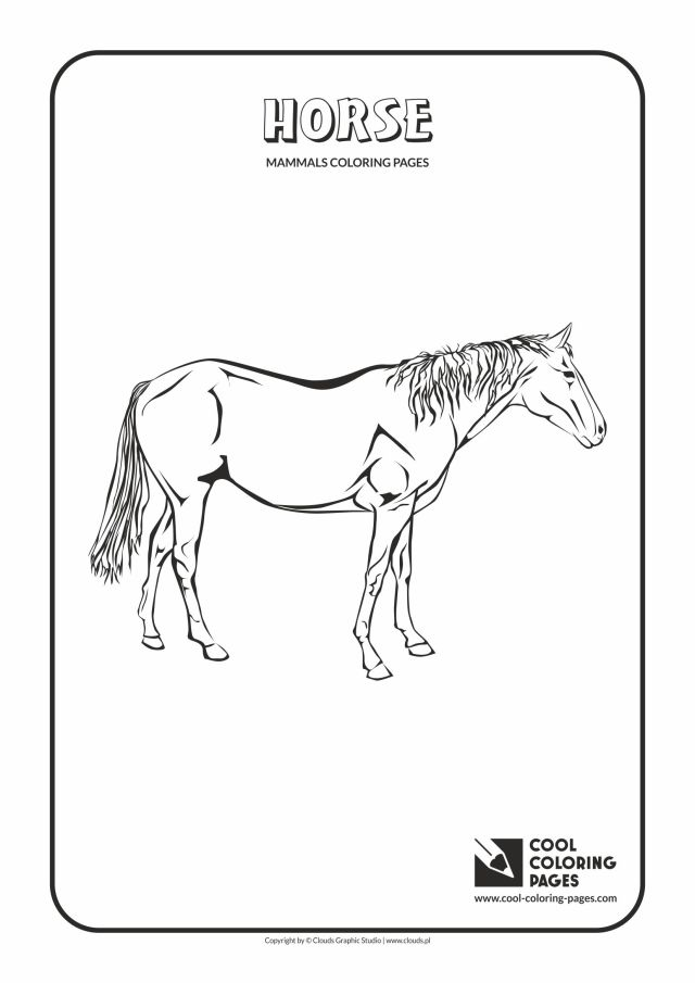 Cool Coloring Pages Mammals coloring pages - Cool Coloring Pages