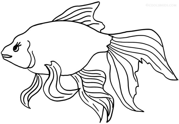 goldfish coloring page # 52