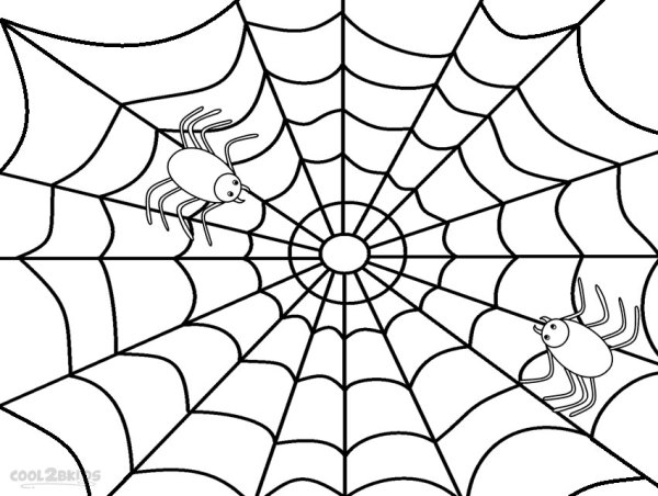 spider web coloring page # 2