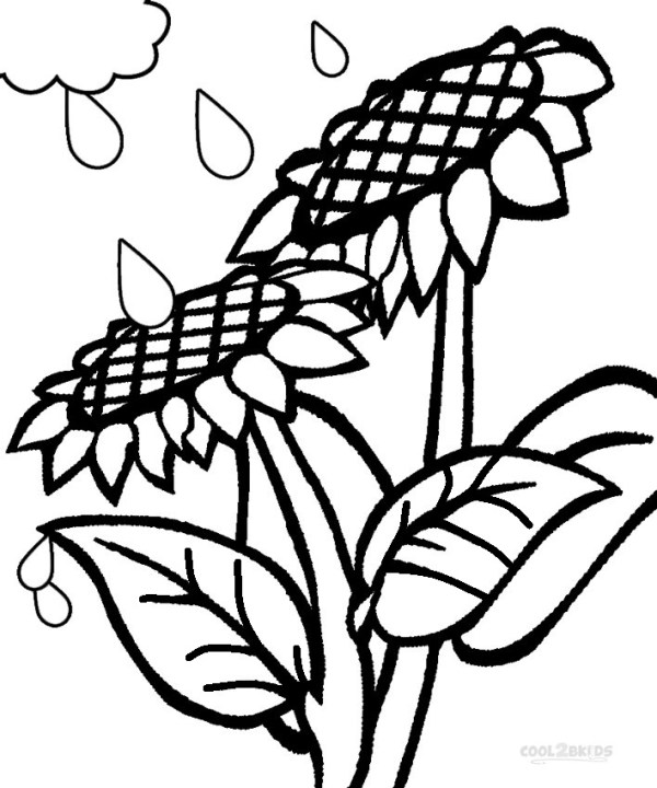 coloring pages to print # 51