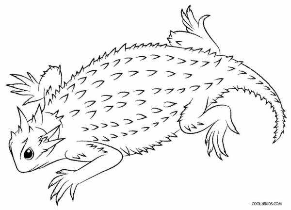lizard coloring page # 16
