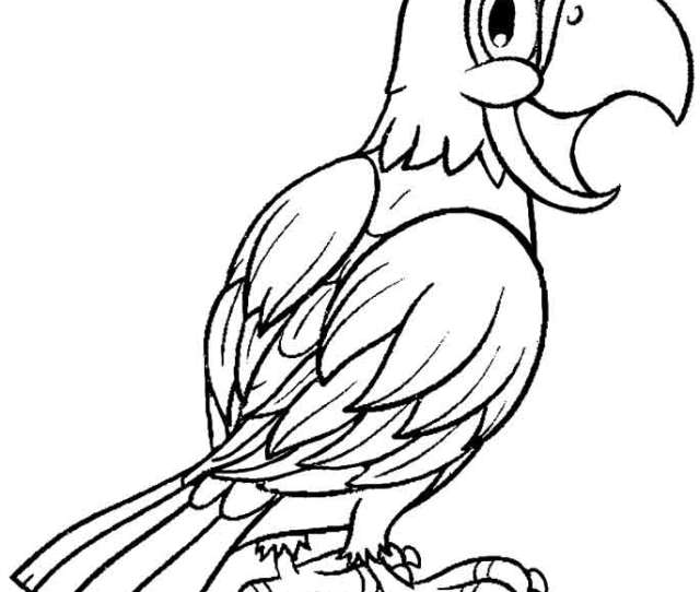 Printable Parrot Coloring Pages For Kids Coolbkids