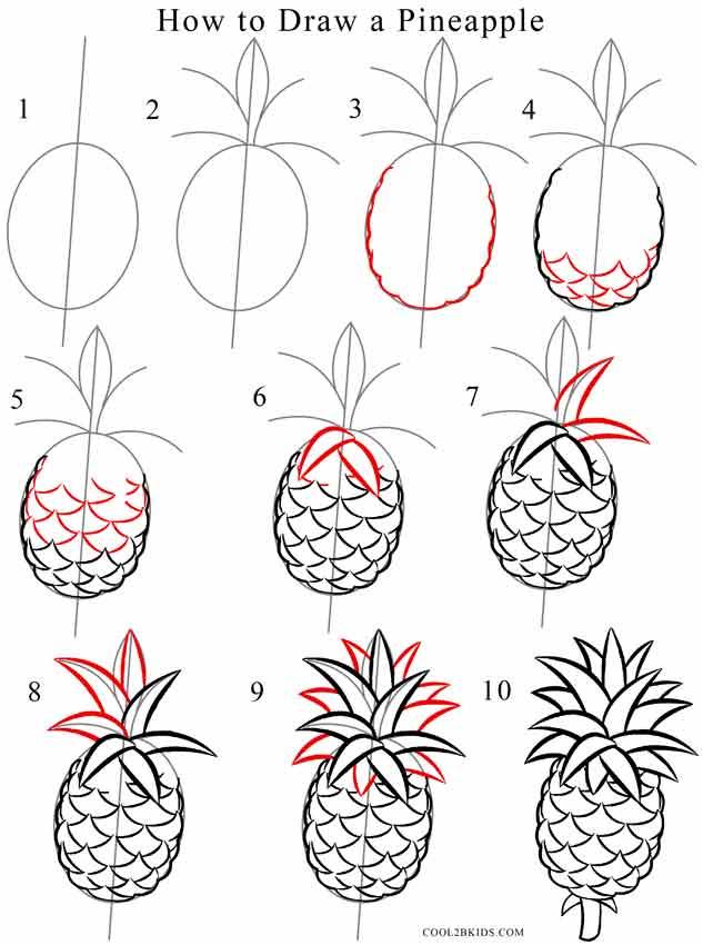 Pineapple Line Drawing