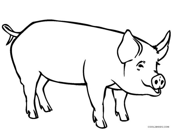 coloring pages of pigs # 4