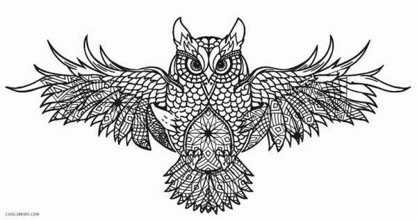 owl color pages # 8