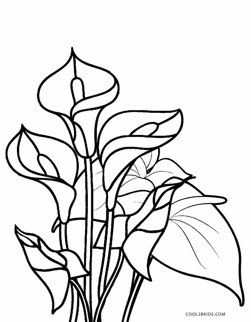 Free Printable Flower Coloring Pages For Kids | Cool2bKids | colouring pages flowers printable