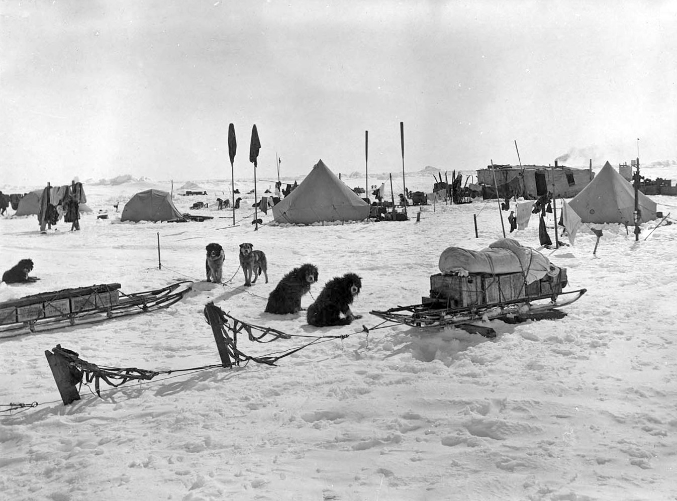 Arctic Expedition Tents