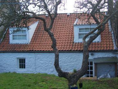 douglas cottage back garden