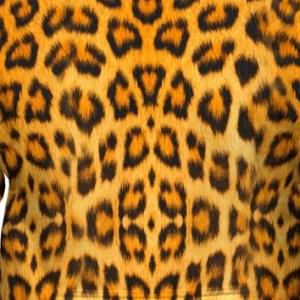 Leopard Skin Hoodie Design