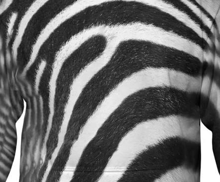 Zebra all over print hoodie design