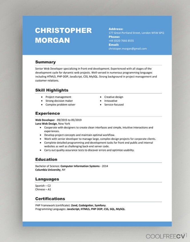 Cv Resume Templates Examples Doc Word
