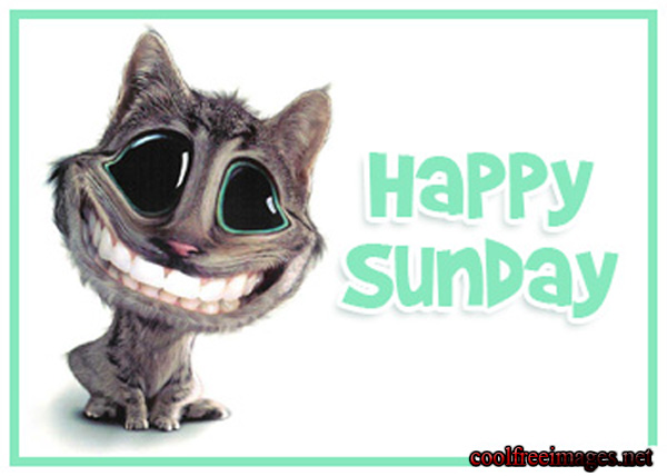 Best Sunday Images And Comments