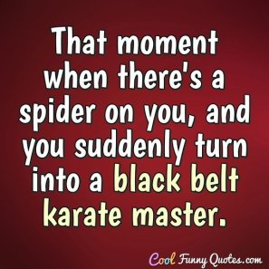 That moment when there's a spider on you, and you suddenly turn into a black belt karate master. - Anonymous