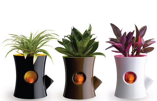 Design Of Your Garden Plant Pot Holders