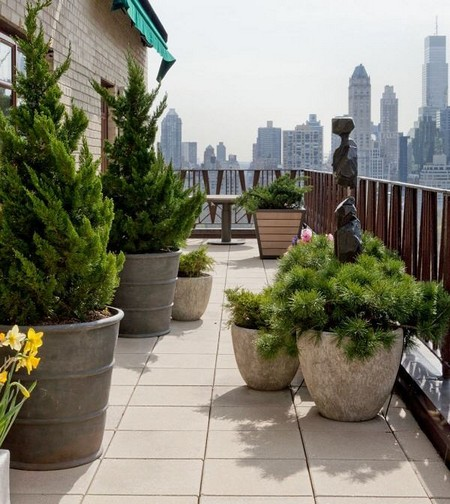roof garden trees Roof Garden With Potted Trees | www.coolgarden.me