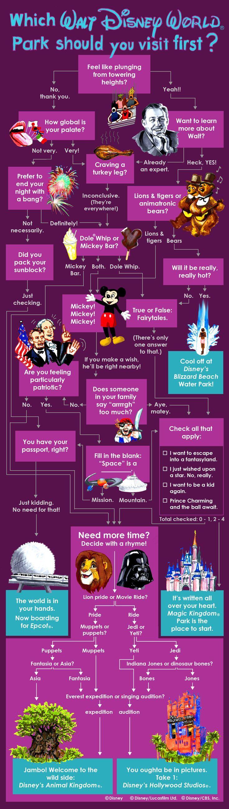 Infographic keuze maken tussen de disneyparken word zo  makkelijker
