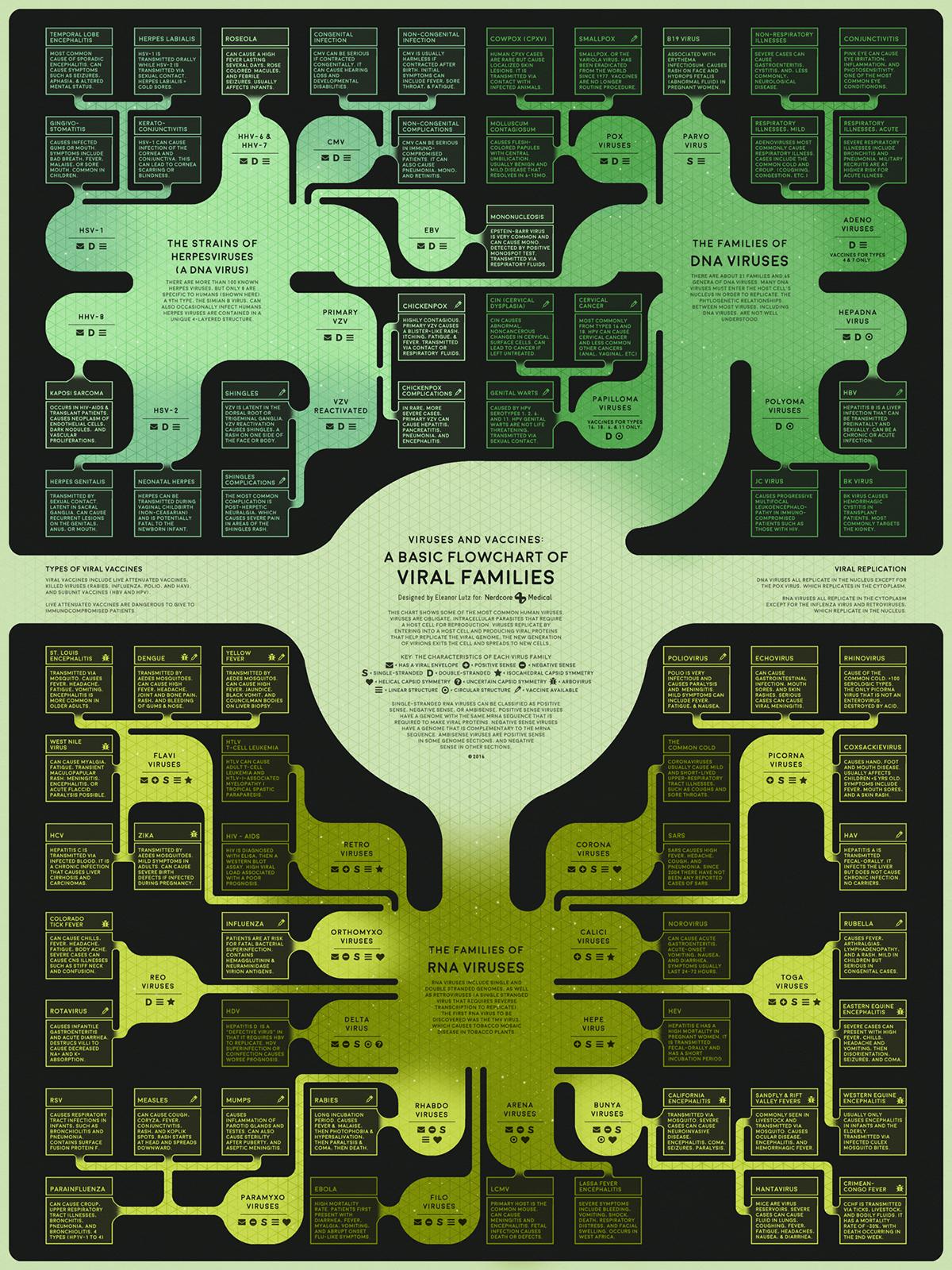 een flowchart van alle virussen
