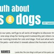 Katten & Honden Infographic Thumbnail