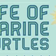 Thumbnail infographic leven marine schildpad.