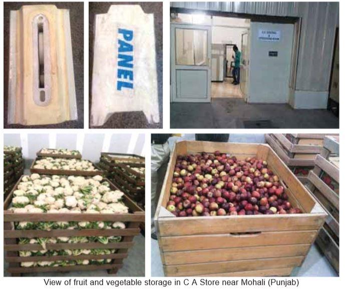 Design of Cold Storage for Fruits & Vegetables - Cooling India