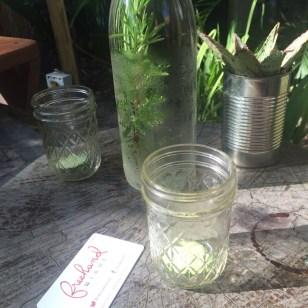 Rosmarinwasser – sehr lecker!