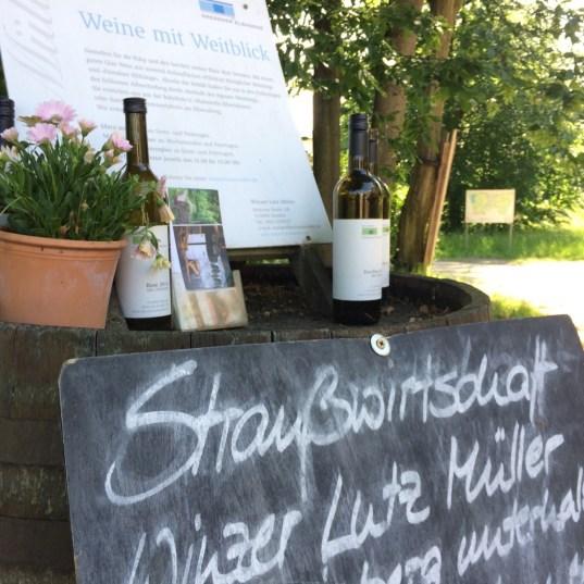 Straußwirtschaft Winzer Müller Dresden
