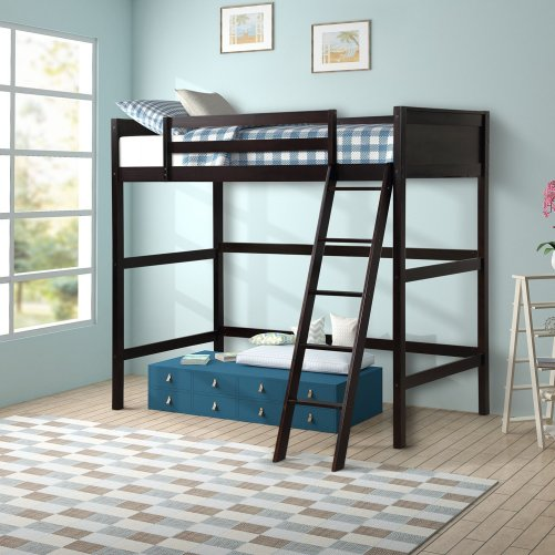 Solid Wood Twin Size Loft Bed Panel Style Loft Bed,Side Angled Ladder 6