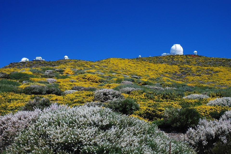 Fotografía de Saúl Santos: Observatorio del Roque de los Muchachos, La Palma