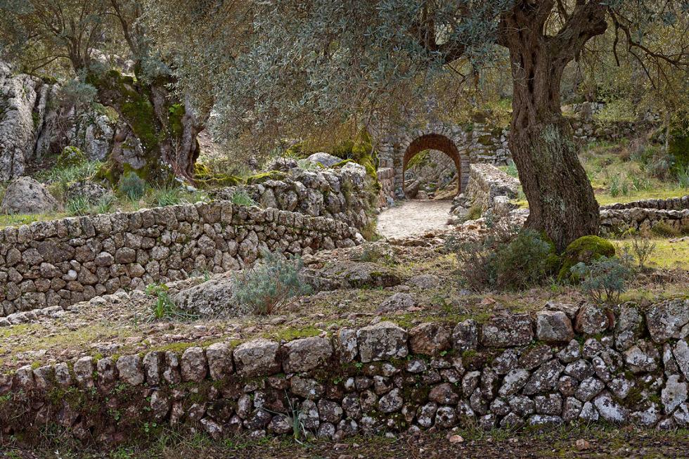 Clot de Albarca. ©Consorci Serra de Tramuntana