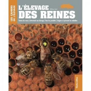elevage_des_reines