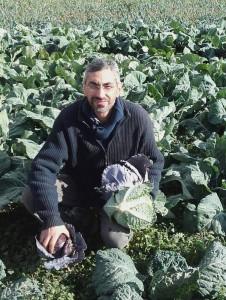 Apoyo financiero agricultura ecológica